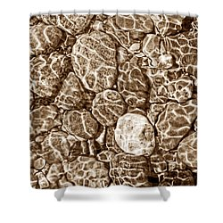 River Rocks In Stream Bed Sepia Shower Curtain by Jennie Marie Schell