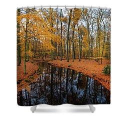 River Through Autumn Shower Curtain