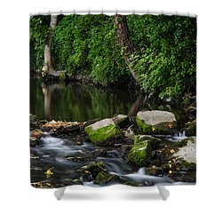 River Tolka Shower Curtain