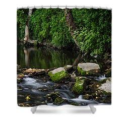 River Tolka Shower Curtain by Martina Fagan