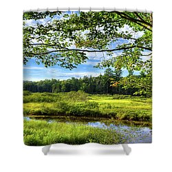 Shower Curtain featuring the photograph River Under The Maple Tree by David Patterson
