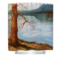 View Of Nebo Shower Curtain