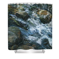 Shower Curtain featuring the painting River Water by Nadi Spencer