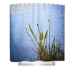 Shower Curtain featuring the photograph Riverbank Beauty by Carolyn Marshall