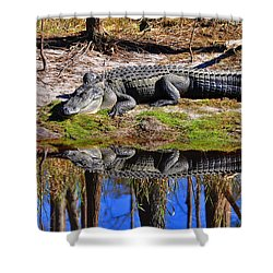 Shower Curtain featuring the photograph Riverside Reflection by Al Powell Photography USA