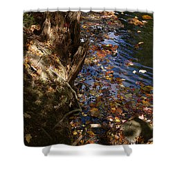 Riverbank View Shower Curtain