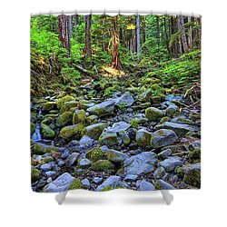 Riverbed Full Of Mossy Stones With Small Cascade Shower Curtain