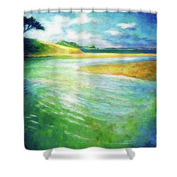 Shower Curtain featuring the painting Rivermouth by Angela Treat Lyon