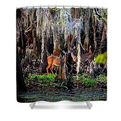 Riverside Deer Shower Curtain