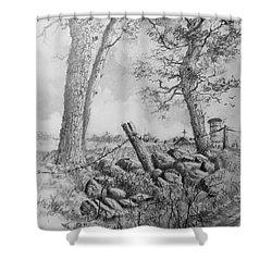 Road Home Shower Curtain by Jim Hubbard