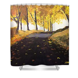 Road In Autumn Shower Curtain