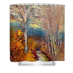 Road Line   Tuscany Shower Curtain
