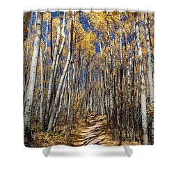 Road Through Aspens Shower Curtain by Michael J Bauer