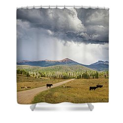 Road To Colorado  Shower Curtain