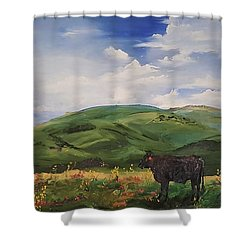 Road To Melrose, Montana         32 Shower Curtain