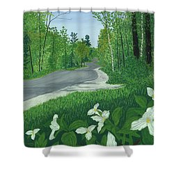 Road To Northport - Spring Shower Curtain