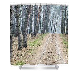 Road To Pine Forest Shower Curtain by Odon Czintos