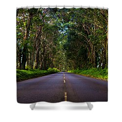 Road To Piopu Shower Curtain