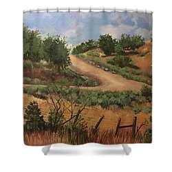 Road To Santa Fe  Shower Curtain