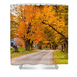 Road To The Farm Shower Curtain