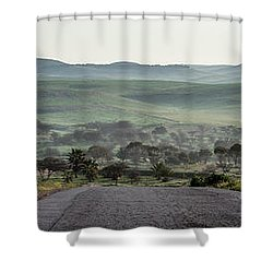 Road To The Forest Shower Curtain by Yoel Koskas