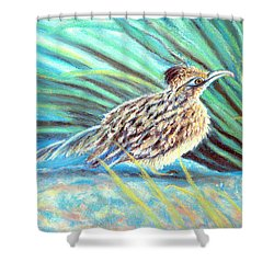Roadrunner Fluffing Sold   Pastel Shower Curtain