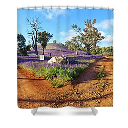 Roads To Salvation Jane Shower Curtain