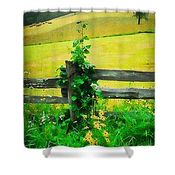 Roadside Beauty Shower Curtain by Darren Fisher