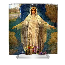 Roadside Madonna  Shower Curtain