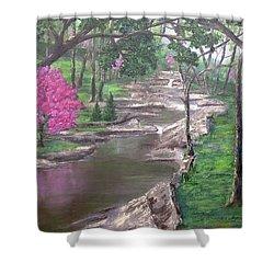 Roadside Park 1  Shower Curtain by T Fry-Green