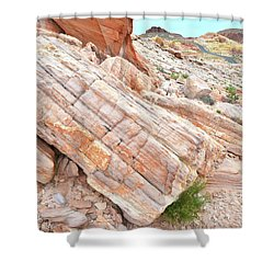 Shower Curtain featuring the photograph Roadside Sandstone In Valley Of Fire by Ray Mathis