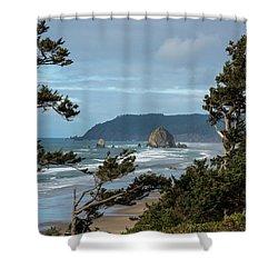 Roadside View Shower Curtain