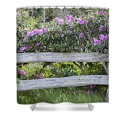 Roan Mountain Azaleas Shower Curtain