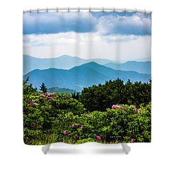 Roan Mountain Rhodos Shower Curtain by Dale R Carlson