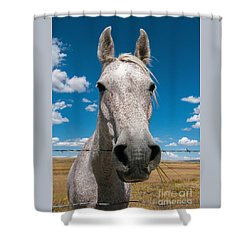 Roan Shower Curtain