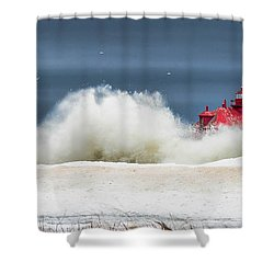 Roar On The Shore In The Door Shower Curtain