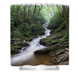 Roaring Fork Falls Shower Curtain
