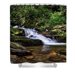 Roaring Fork Waterfall Shower Curtain