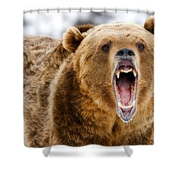 Roaring Grizzly Bear Shower Curtain