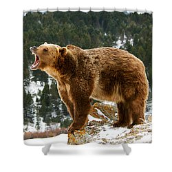 Roaring Grizzly On Rock Shower Curtain