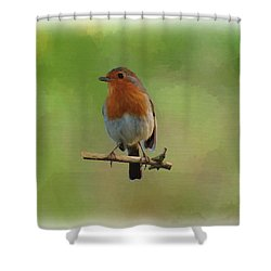 Shower Curtain featuring the digital art Robin-1 by Paul Gulliver