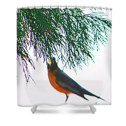 Shower Curtain featuring the photograph Robin 2 by Lenore Senior