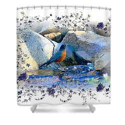 Shower Curtain featuring the photograph Robin by Athala Carole Bruckner
