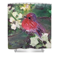 Robin Chick In White Cherry Blossoms Shower Curtain
