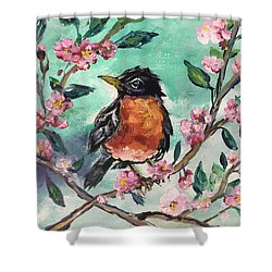 Robin In A Budding Cherry Tree Shower Curtain