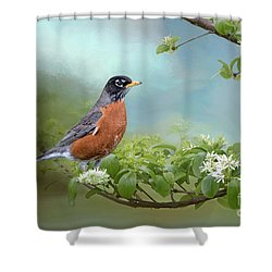 Robin In Chinese Fringe Tree Shower Curtain by Bonnie Barry