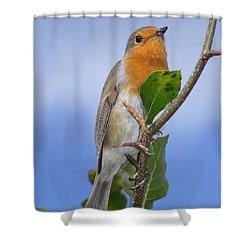 Robin In Eden Shower Curtain