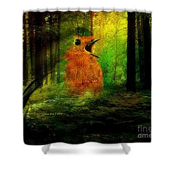 Robin In The Forest Shower Curtain