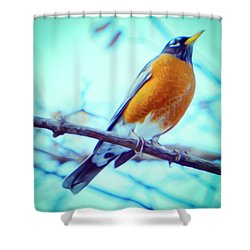 Robin Red Breast In Winter - Impressionism Shower Curtain