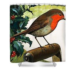 Robin Redbreast Shower Curtain by English School